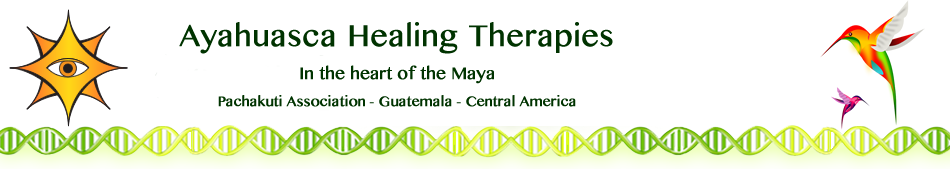 Ayahuasca Healing Ceremonies and Retreats